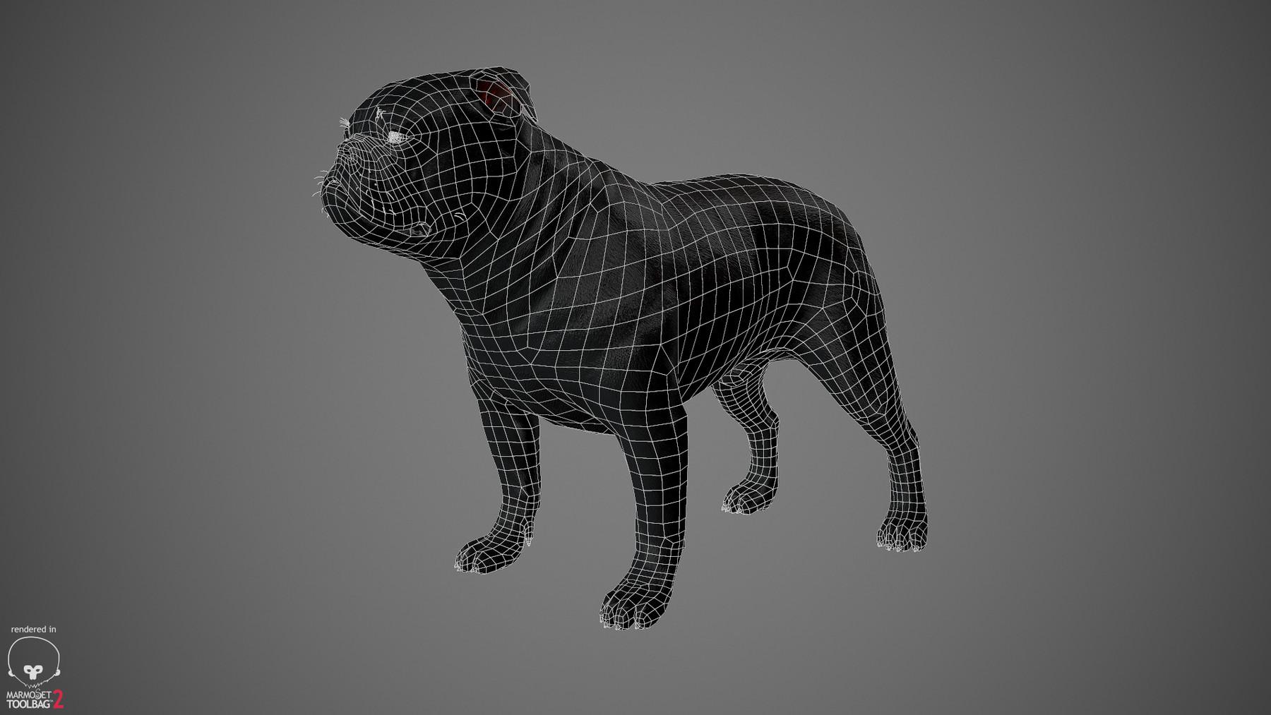 Englishbulldog by alexlashko wireframe 01