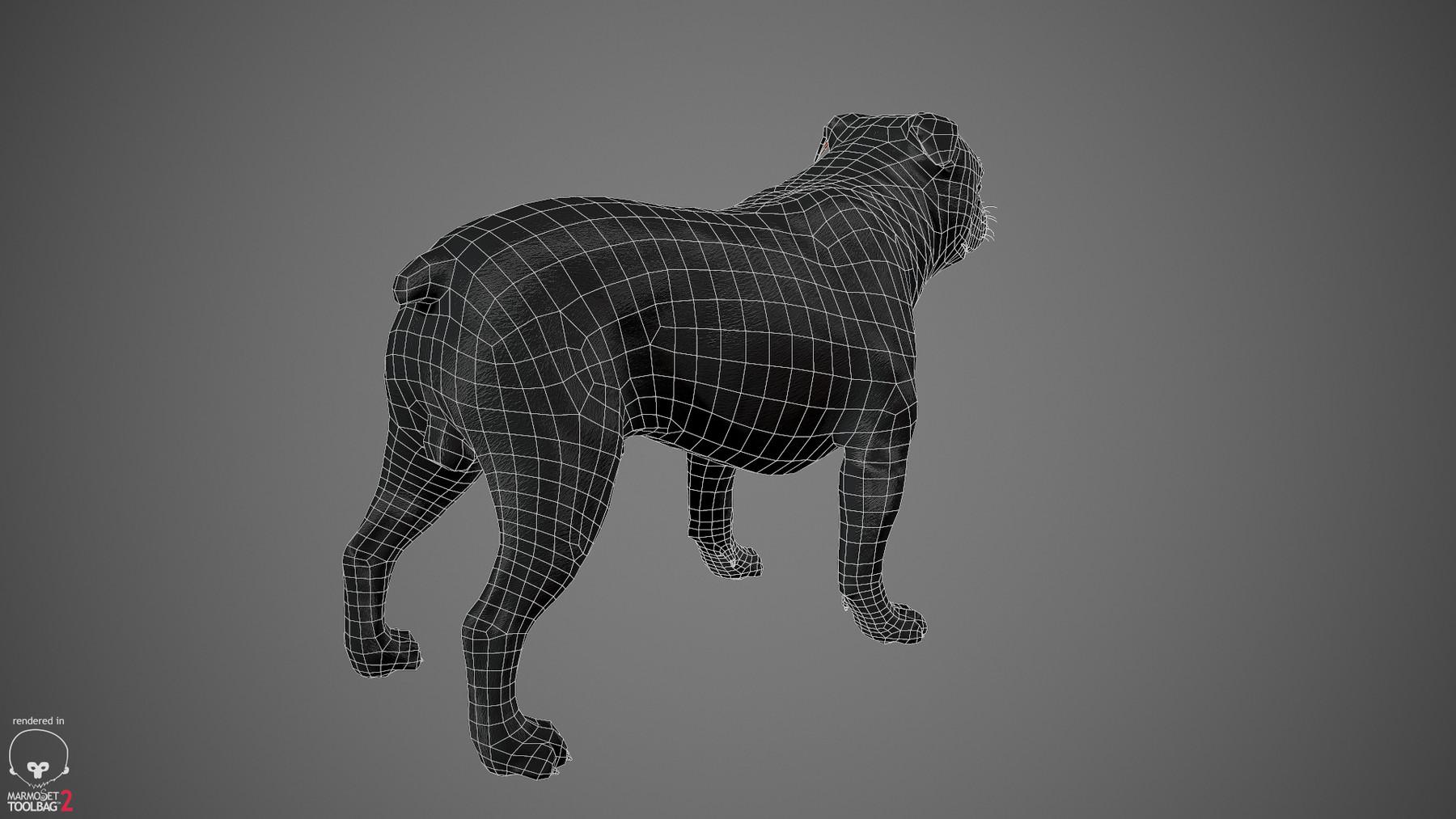Englishbulldog by alexlashko wireframe 02