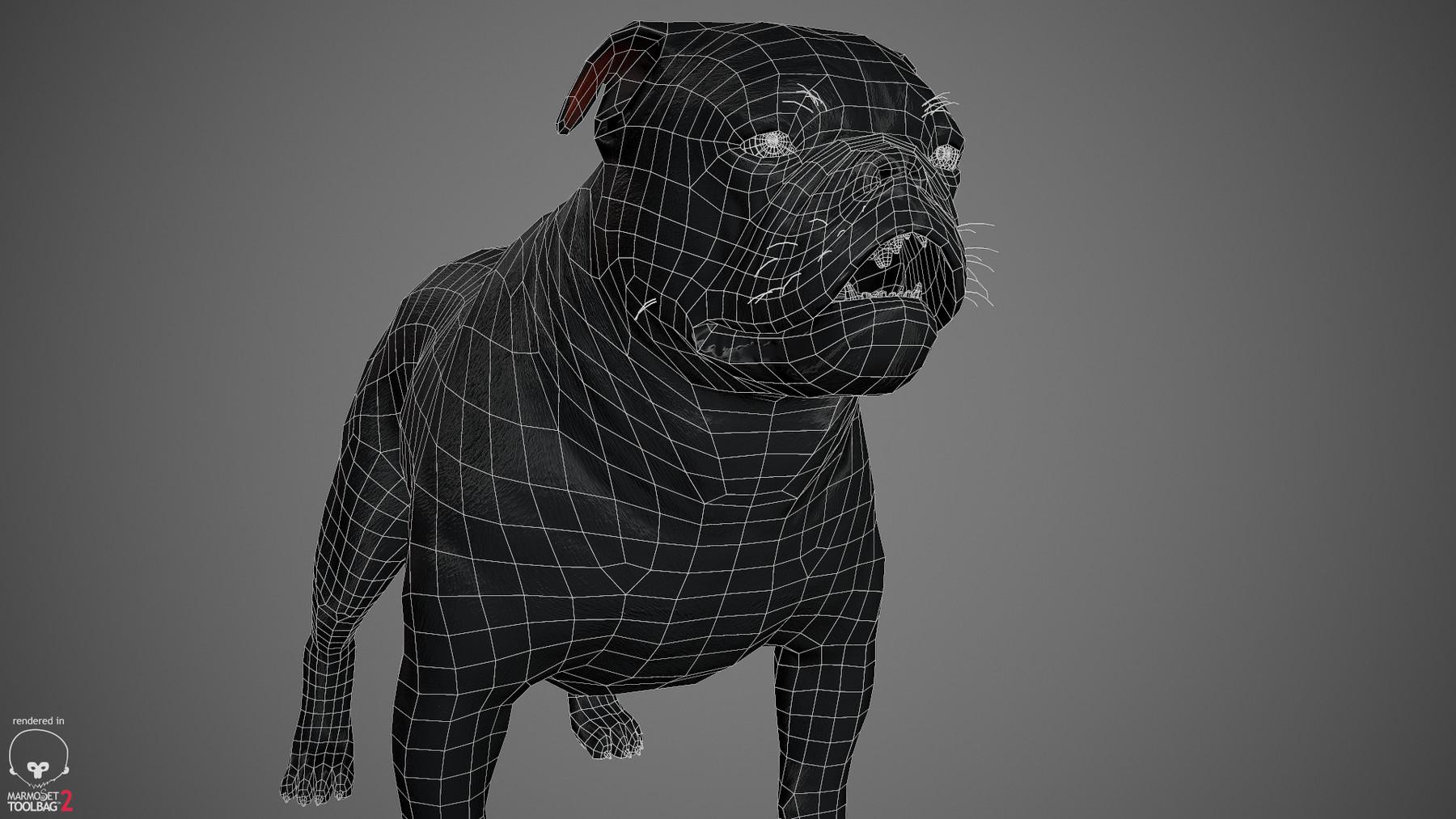 Englishbulldog by alexlashko wireframe 05