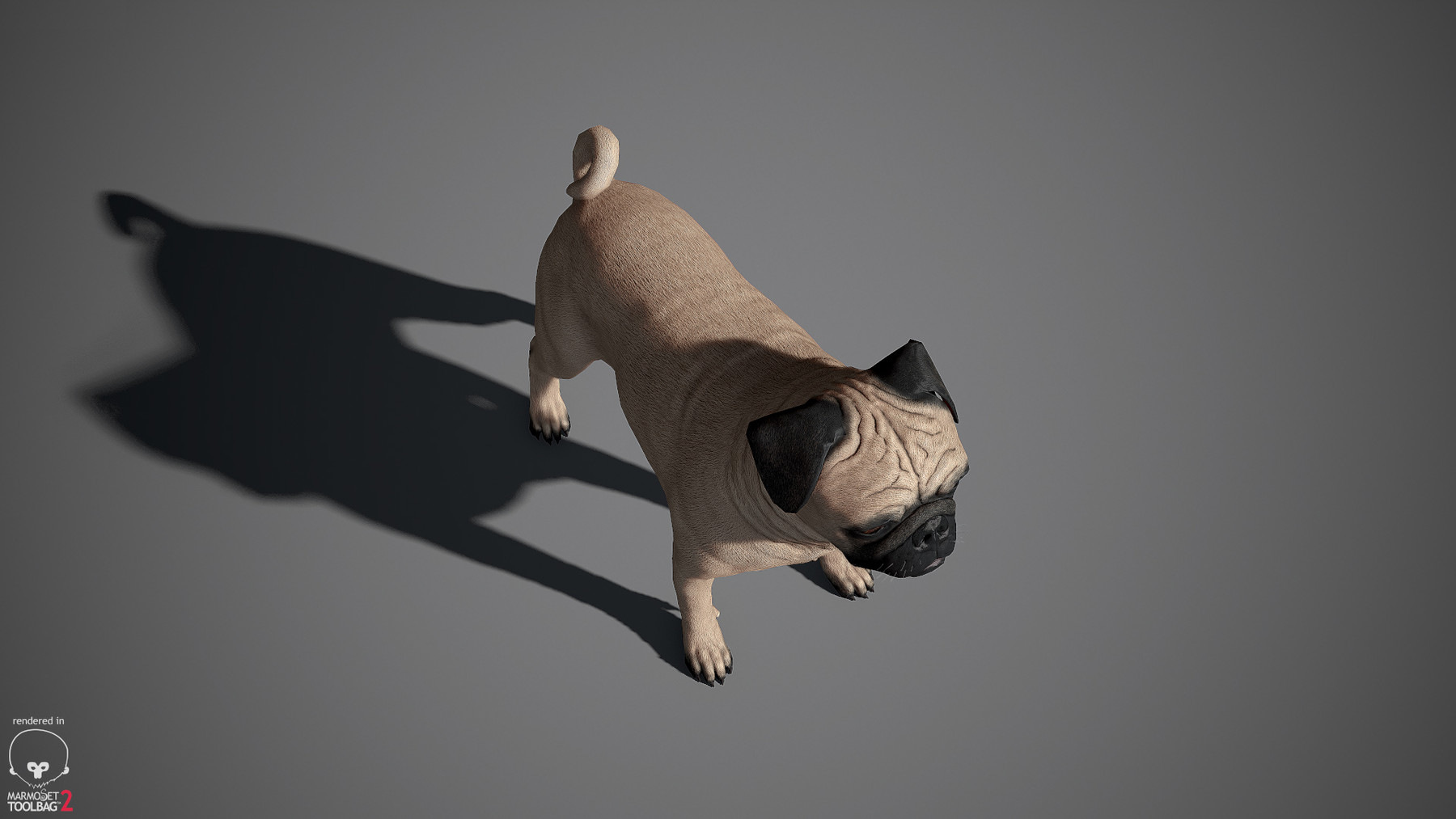 Pug by alexlashko marmoset 11