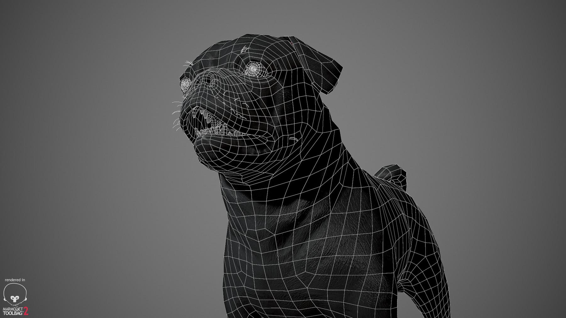 Pug by alexlashko wireframe 05