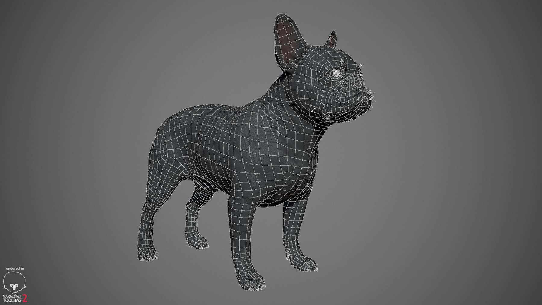 Frenchbulldog by alexlashko wireframe 01