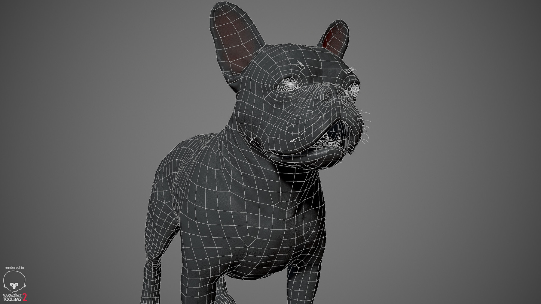Frenchbulldog by alexlashko wireframe 03