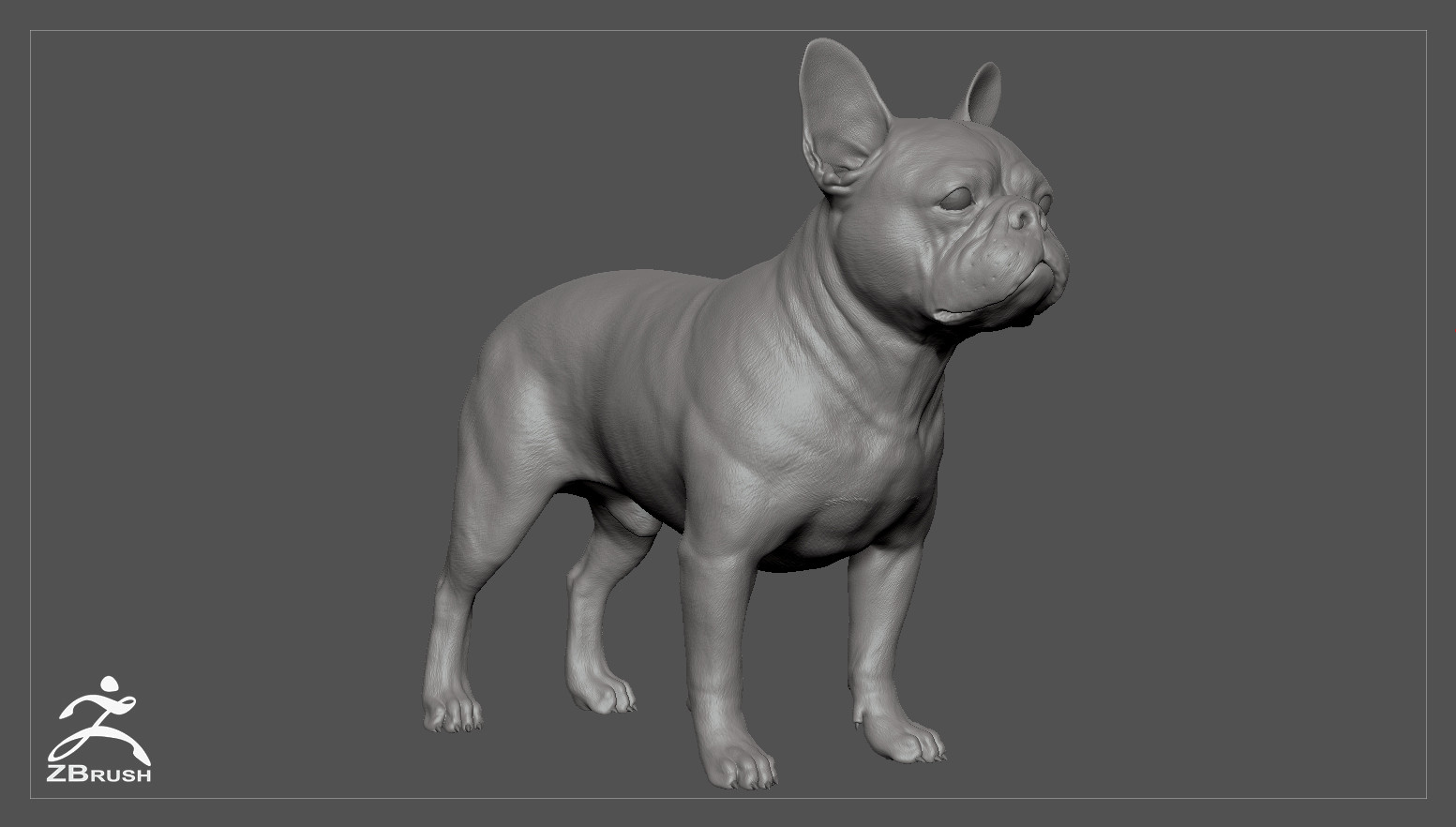 Frenchbulldog by alexlashko zbrush 01
