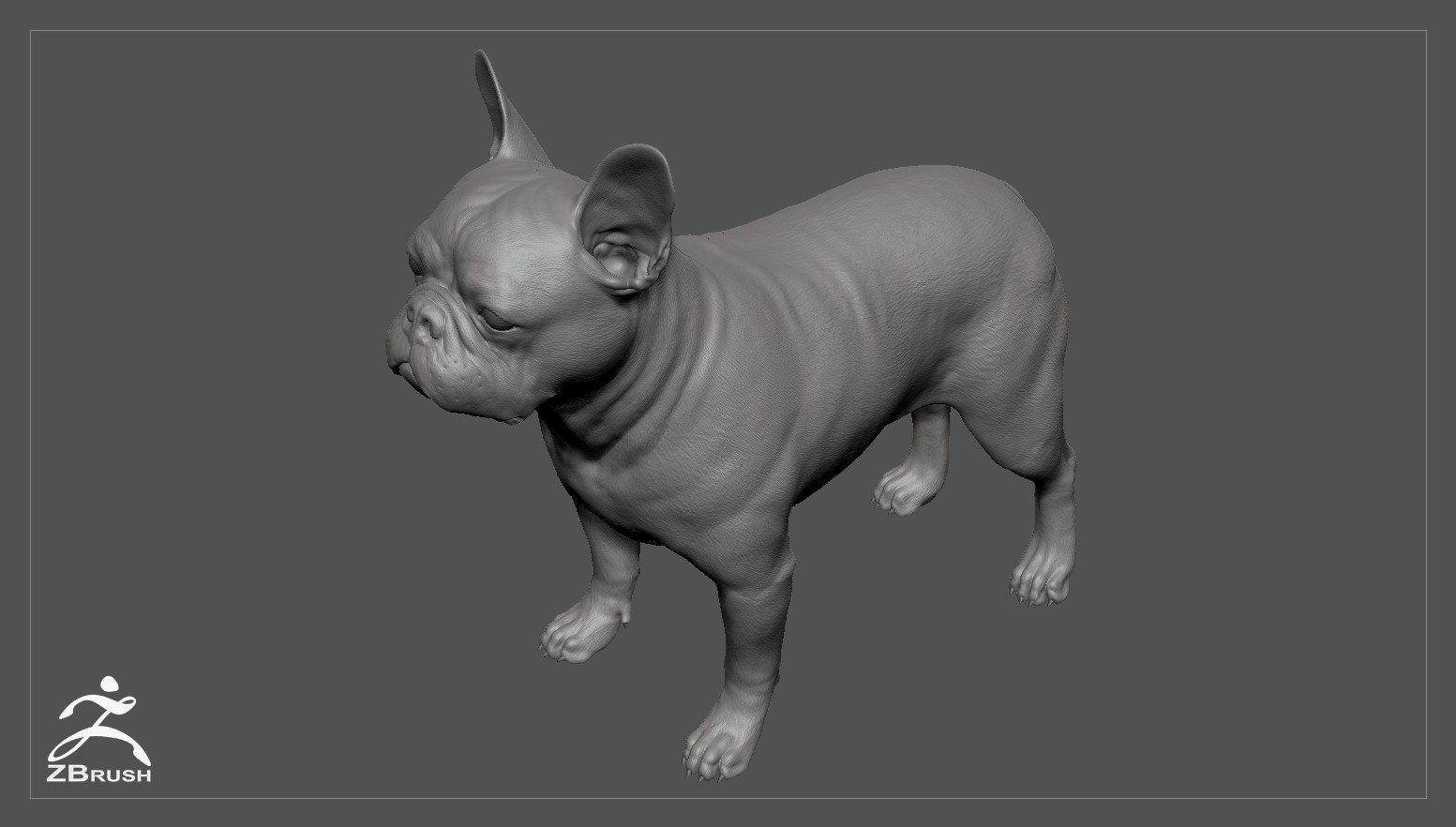 Frenchbulldog by alexlashko zbrush 03