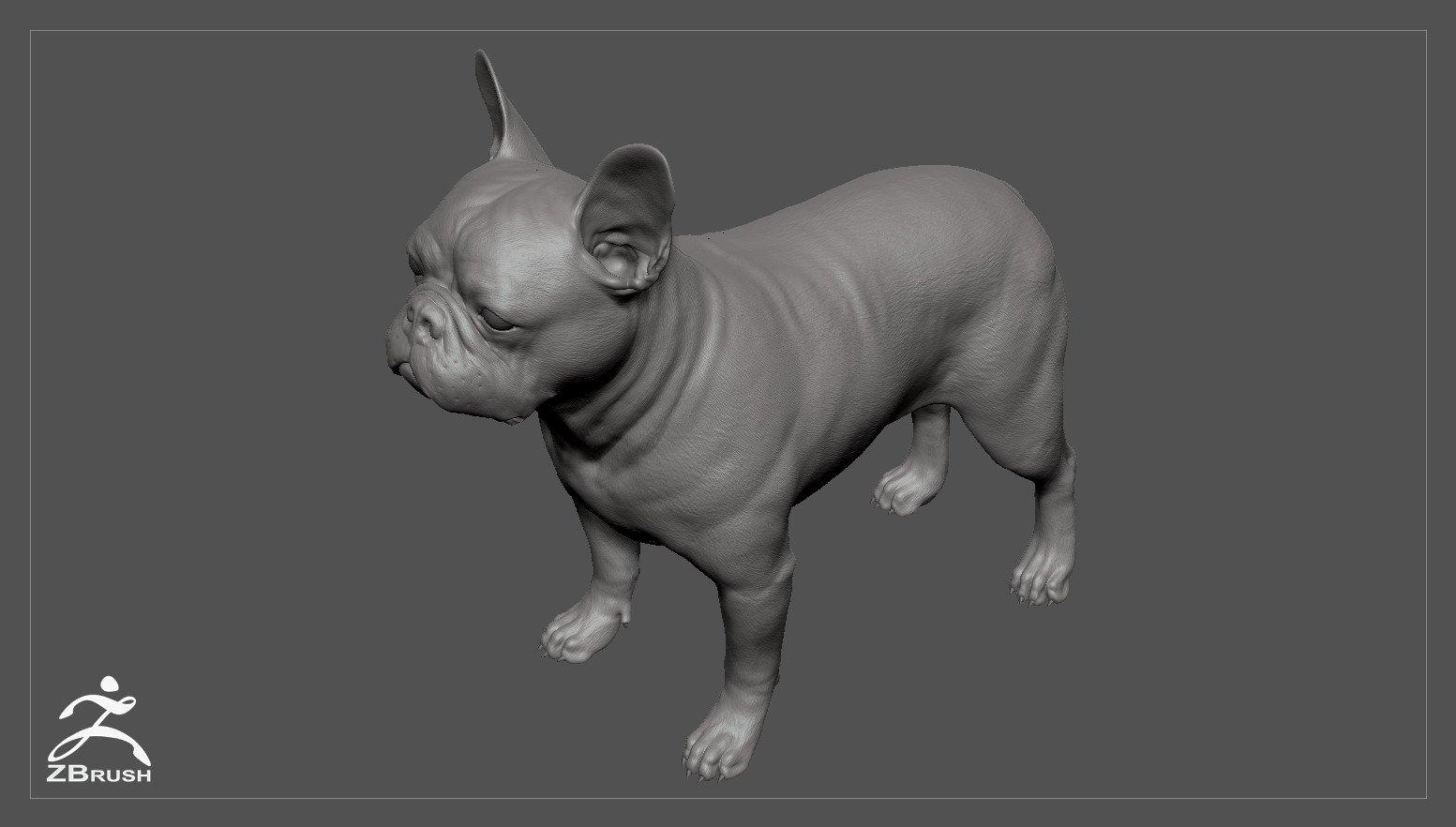 Frenchbulldog by alexlashko zbrush 03