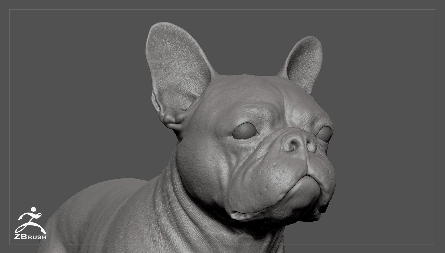 Frenchbulldog by alexlashko zbrush 05
