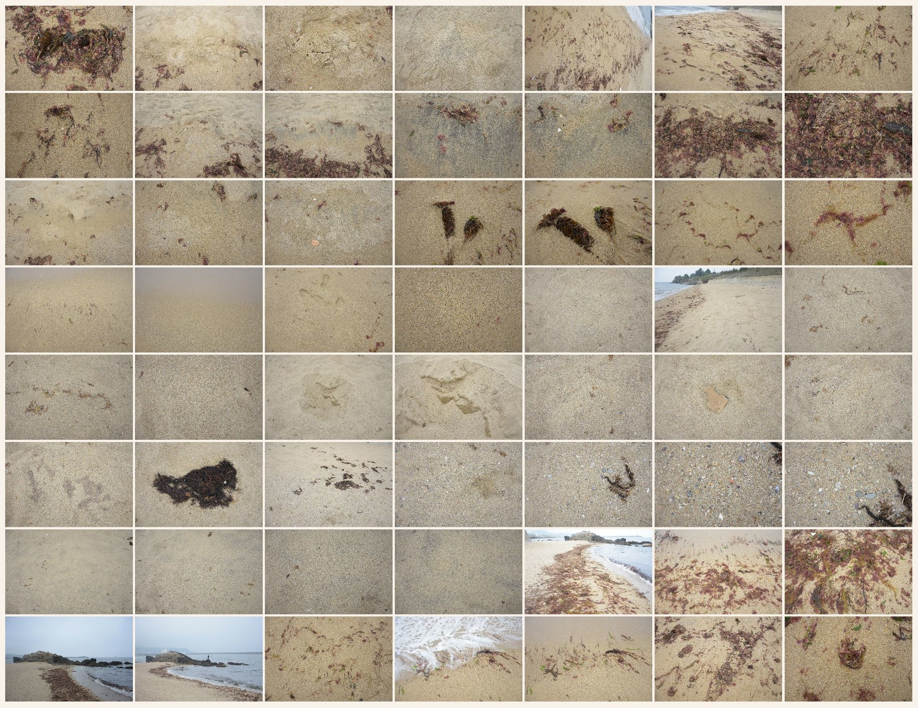 Texture reference pack beach sand 4