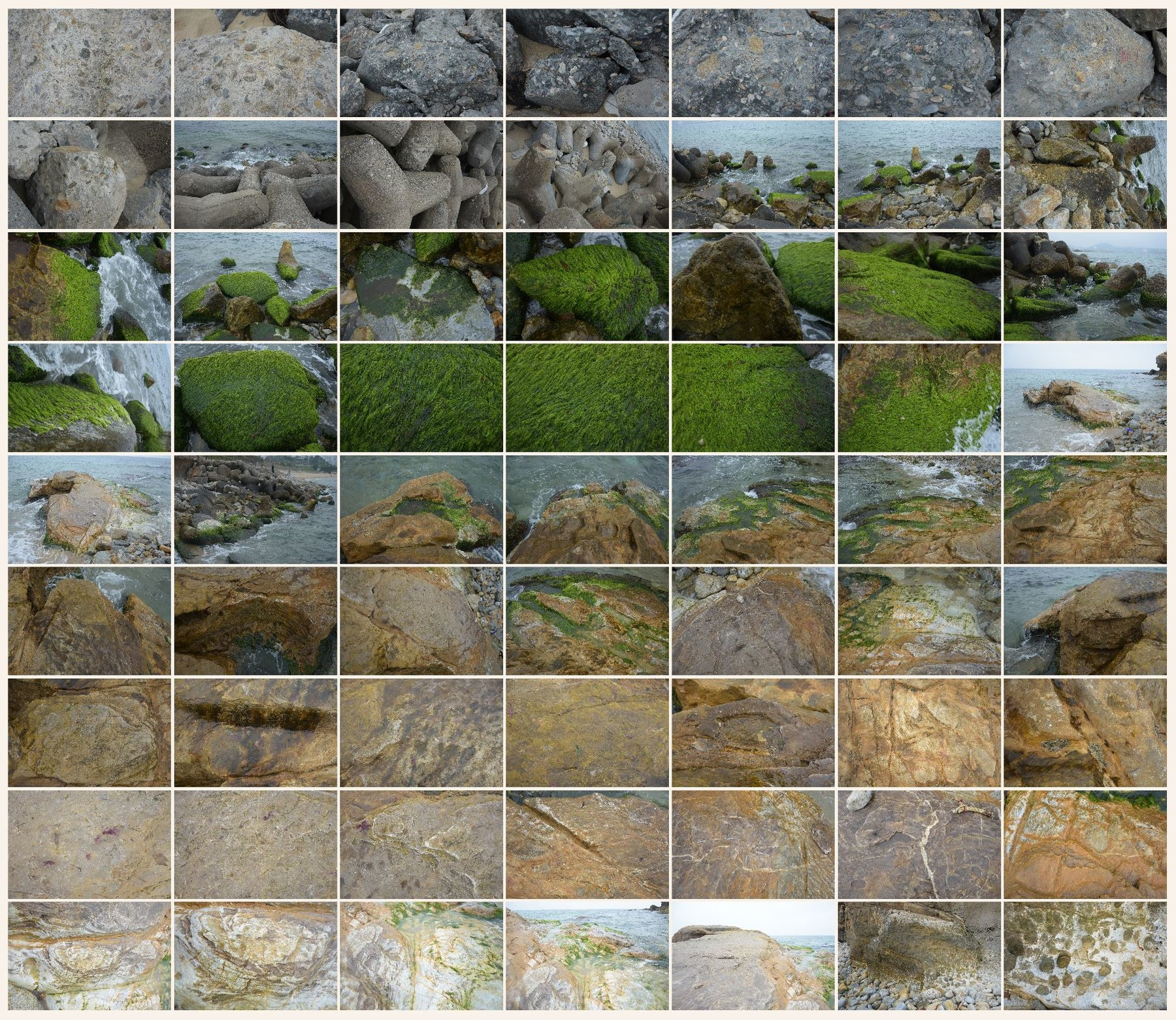 Texture reference pack rocks shore 1