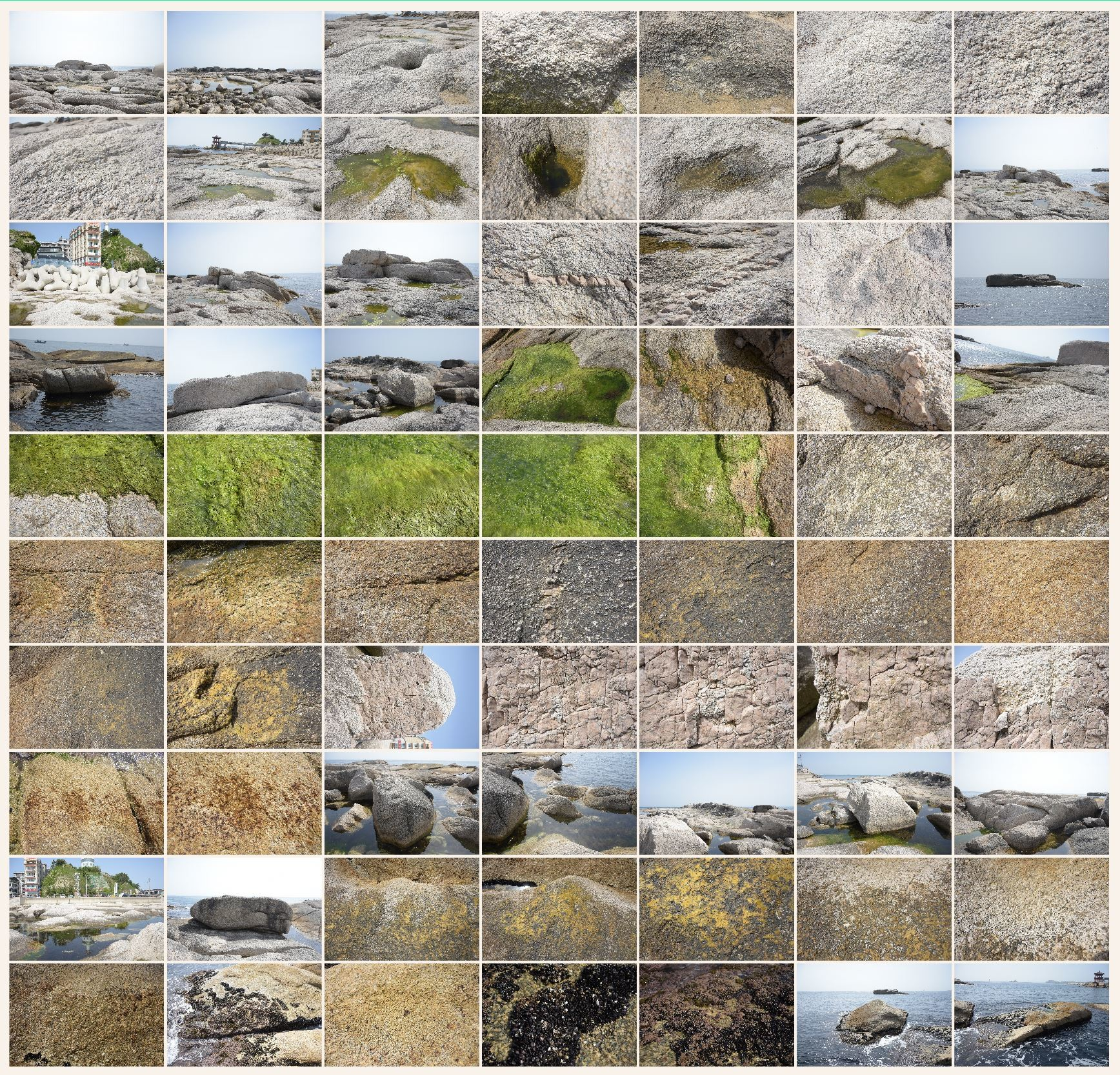 Texture reference pack rocks shore 7