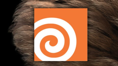 Hairdini:  Procedural Hair Card Kit for Houdini and Substance Designer
