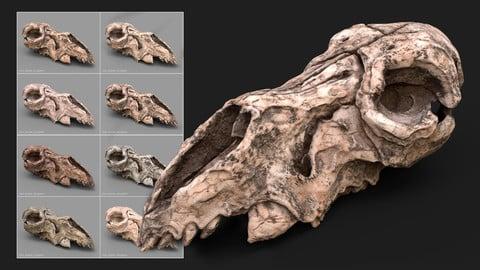 SP Smart Materials: Bone