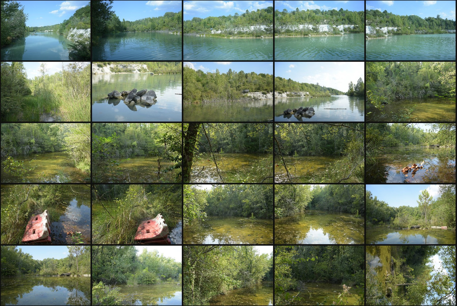 Photo reference pack swamp 1
