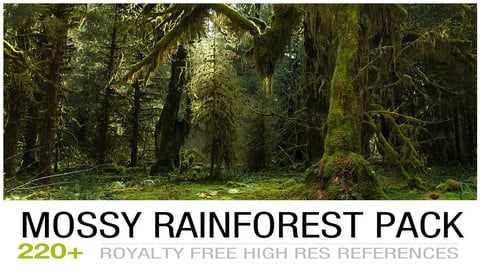 Mossyrainforest cover2
