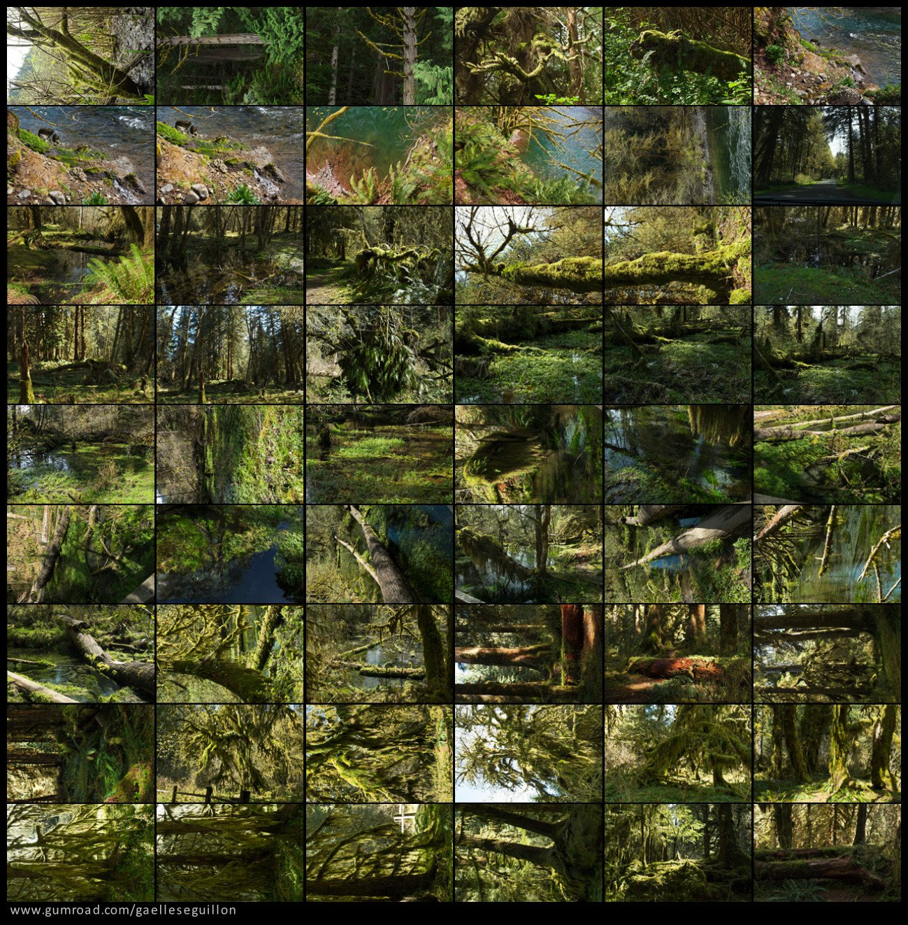 Mossy rainforest preview 1