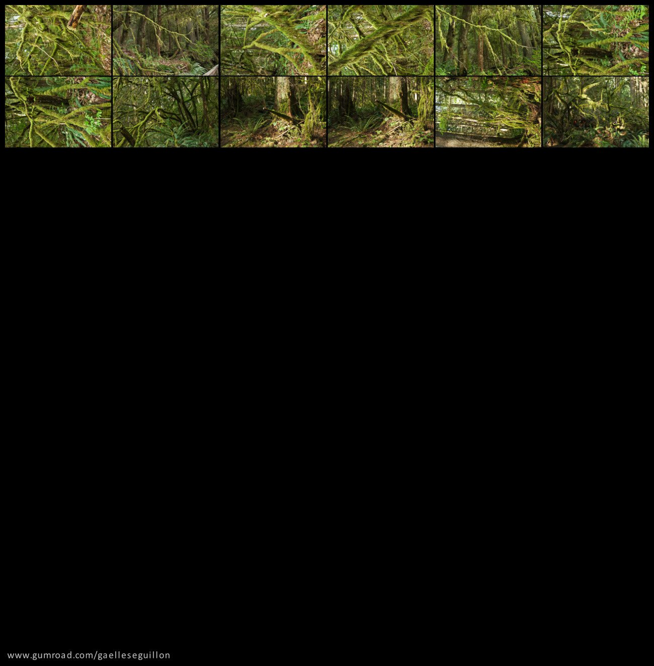 Mossy rainforest preview 5
