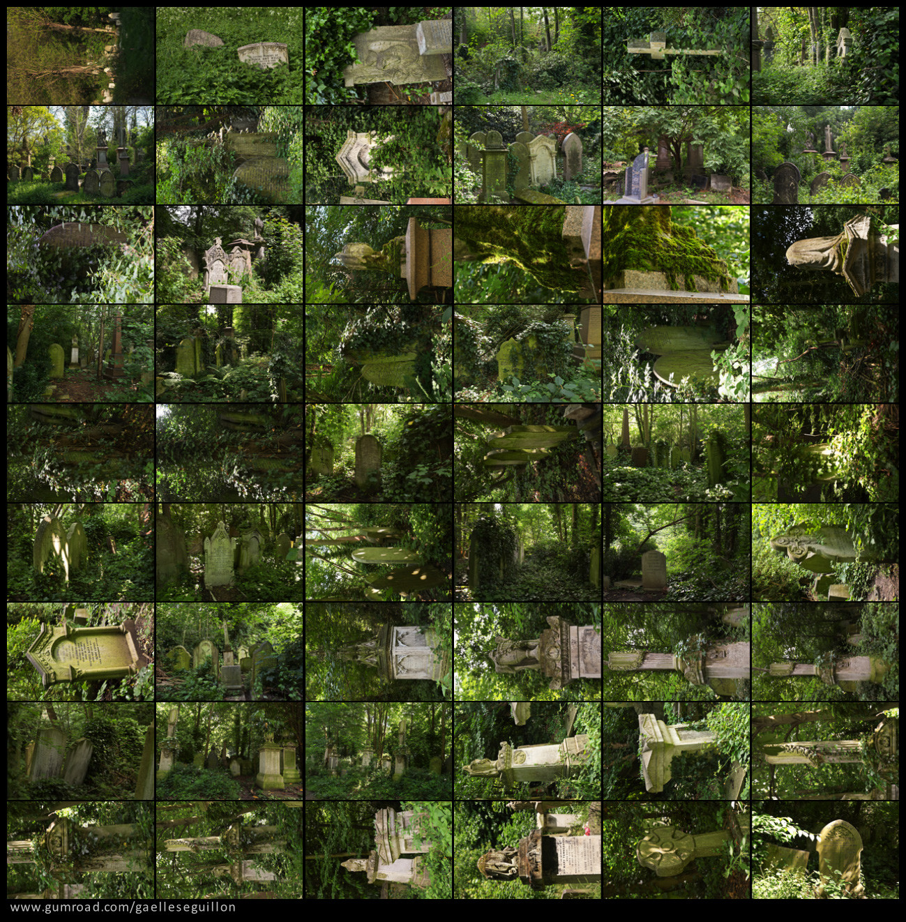 Overgrown cemetery preview.jpg 4