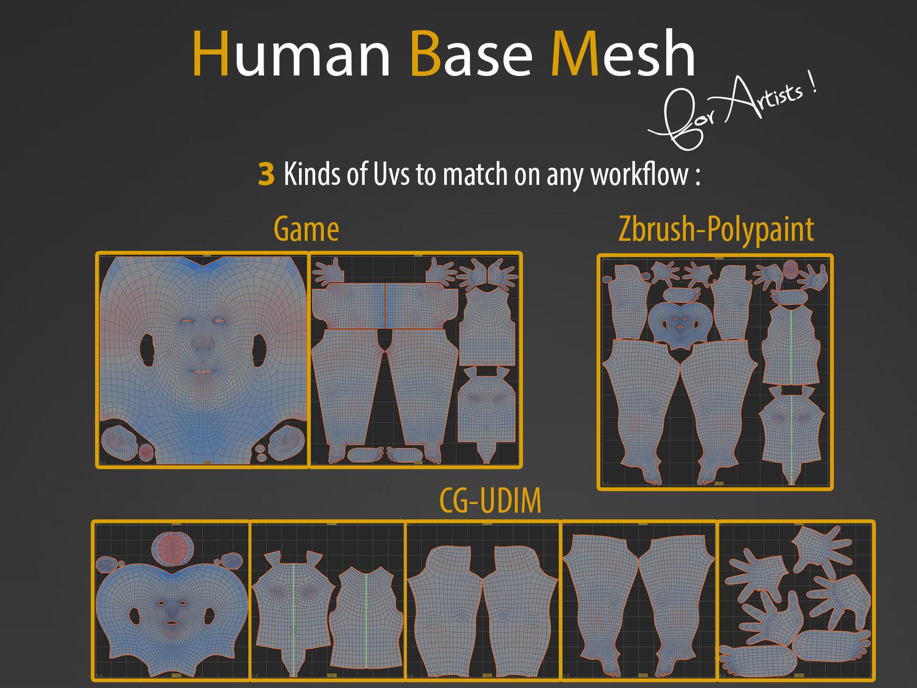 Human bm img3
