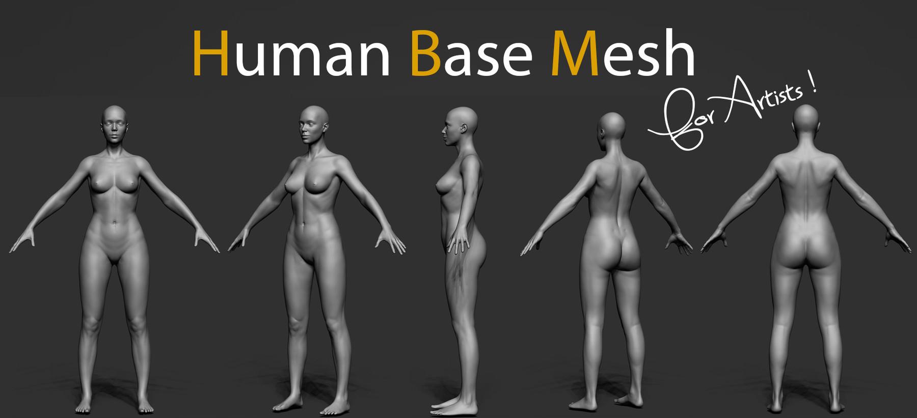 Human bm img5