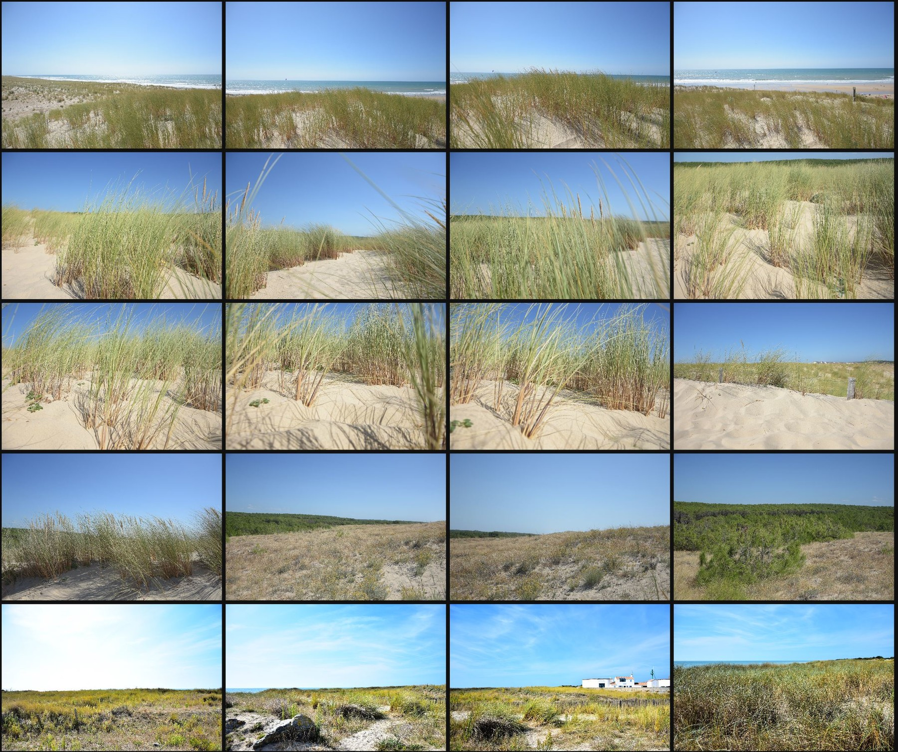 Psd photo reference pack sand dunes 14