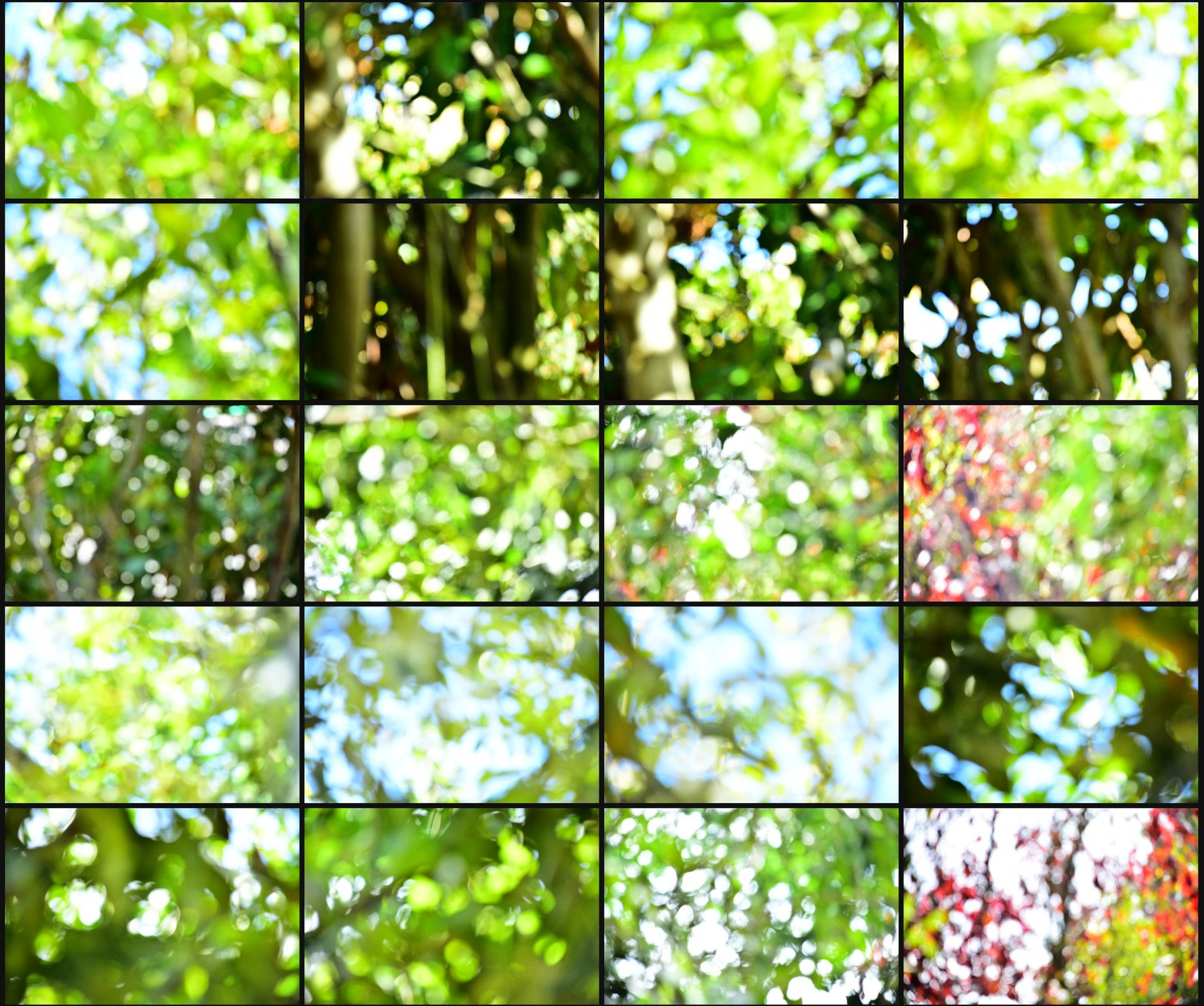 Texture pack abstract bokeh volume 1 nature 09