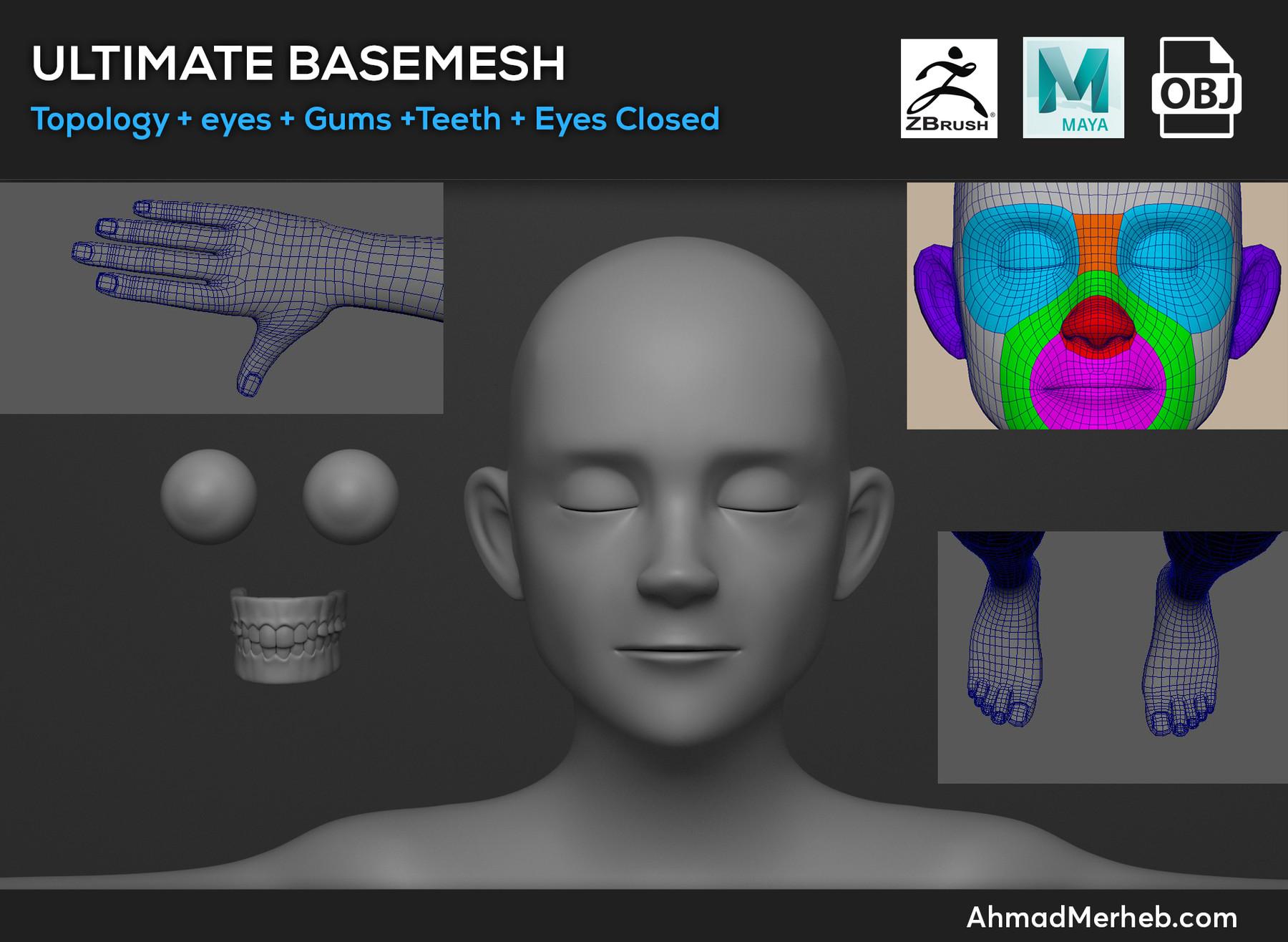 Basemesh