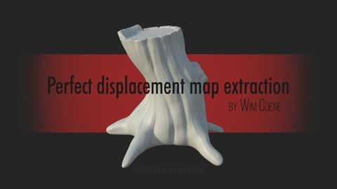 Perfect Displacement Map Extraction by Wim Coene