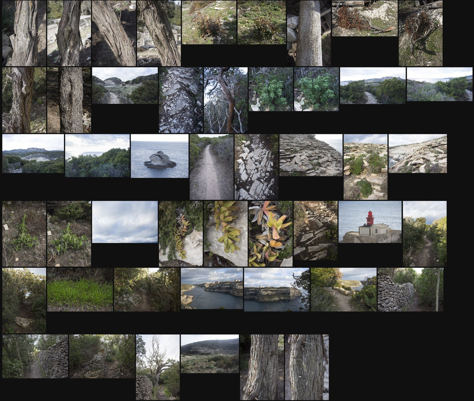 Photo reference pack corsica landscapes volume1 11