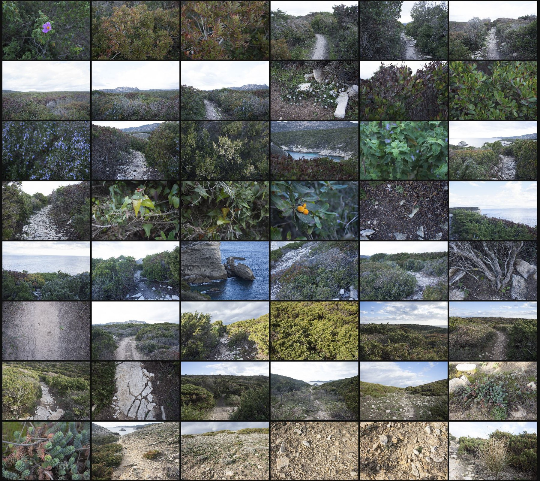 Photo reference pack corsica landscapes volume1 13