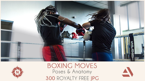 Photo reference pack poses anatomy boxing moves 03