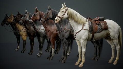 Real time horses Complete Files