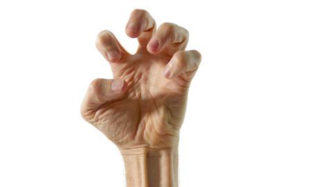 Art Model Poses - Hands
