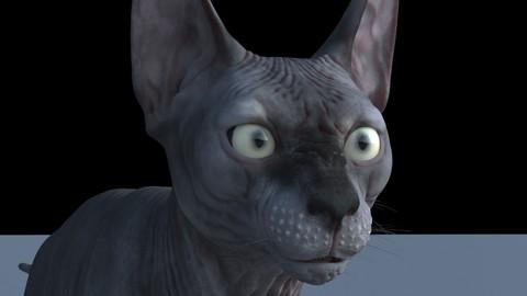 Sphynx Cat Maya Rig