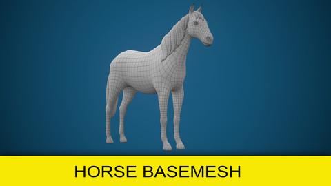 Horse Basemesh