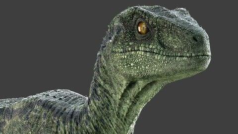 Raptor Maya Rig