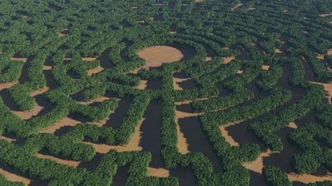 Create a Forest Maze in Terragen