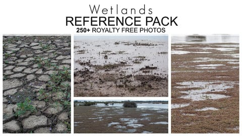Reference Pack - Wetlands 250+ Royalty Free Photos