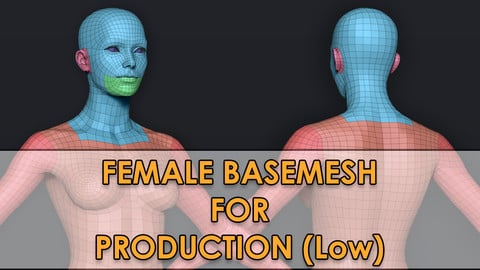 Female Basemesh (low poly) V2