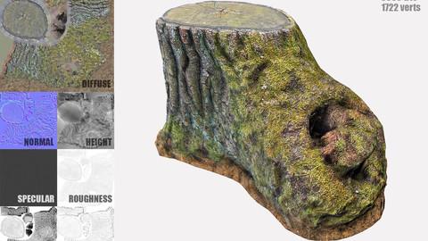 Mossy Tree Stump