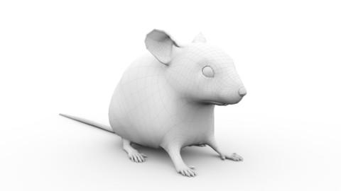 Mouse Basemesh - Realistic Style