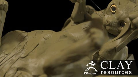 Clay Resources for ZBrush