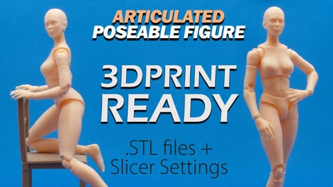 Articulated Poseable Female Figure - 3DPrint Ready