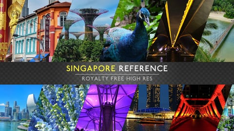 REFERENCE PACK - SINGAPORE