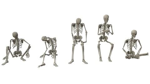 Skeleton Sitting Poses - Low-poly 3D model