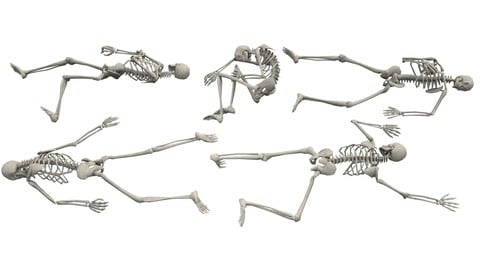 Skeleton Laying Poses - Low-poly 3D model