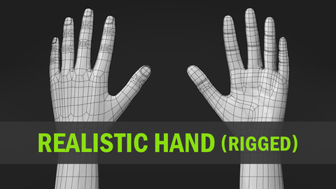 Realistic Hand-Rigged