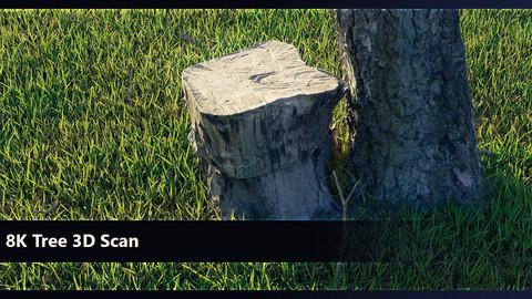 8K Tree Scan