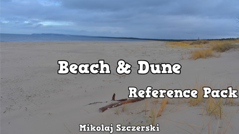 Beach & Dune | Reference Pack