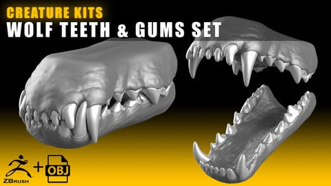 CREATURE KITS: Wolf Teeth & Gums - High Poly OBJ File / ZBrush File with Subdivisions
