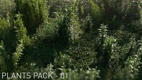 3D Plants Pack 01